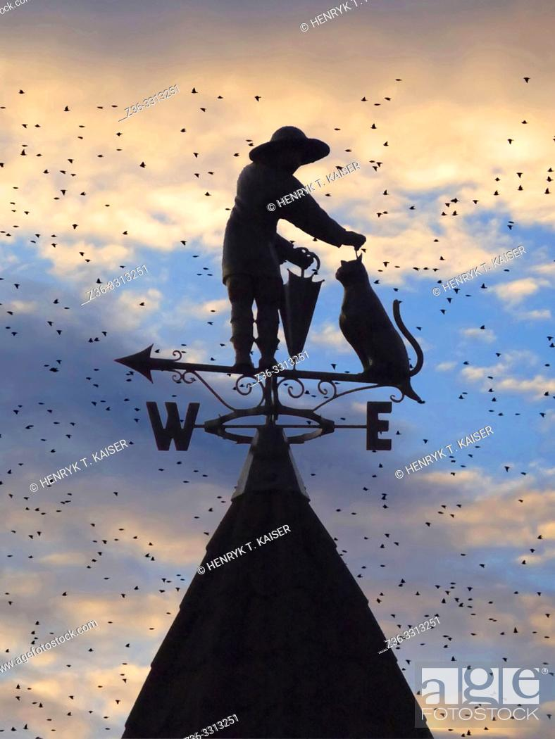 Stock Photo: Man with cat as a weather vane on the roof in Truskawiec, Ukraine.
