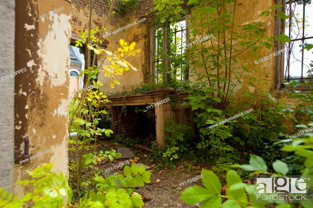 Stock Photo: Amay, Belgium. Overgrown sacristy in an abandoned abbey.