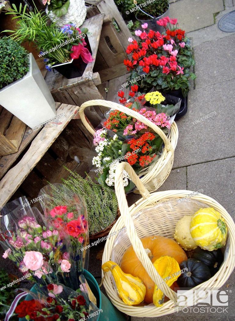 Stock Photo: Flower shop.