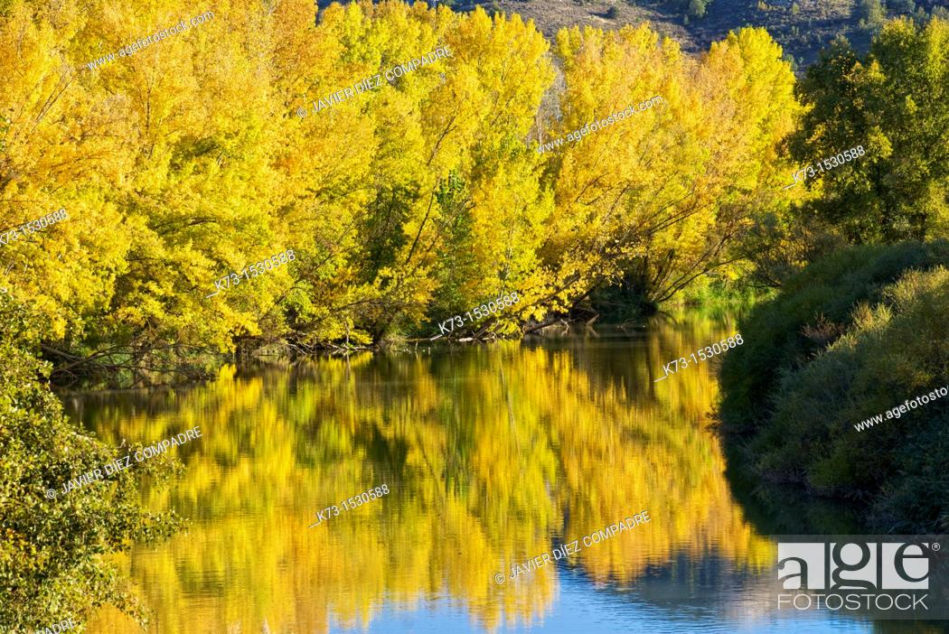 Stock Photo: Duero River. Valbuena de Duero. Valladolid Province. Castilla y Leon. Spain.