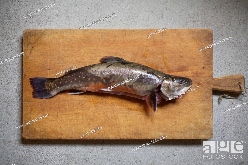 Stock Photo: A fish on a wooden cutting board.