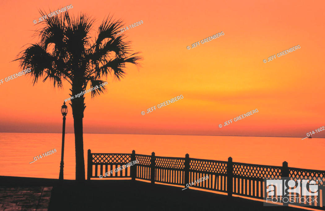 Palm Tree Grand Hotel Mobile Bay Point Clear Alabama Usa Stock Photo Picture And Rights Managed Image Pic G14 160269 Agefotostock