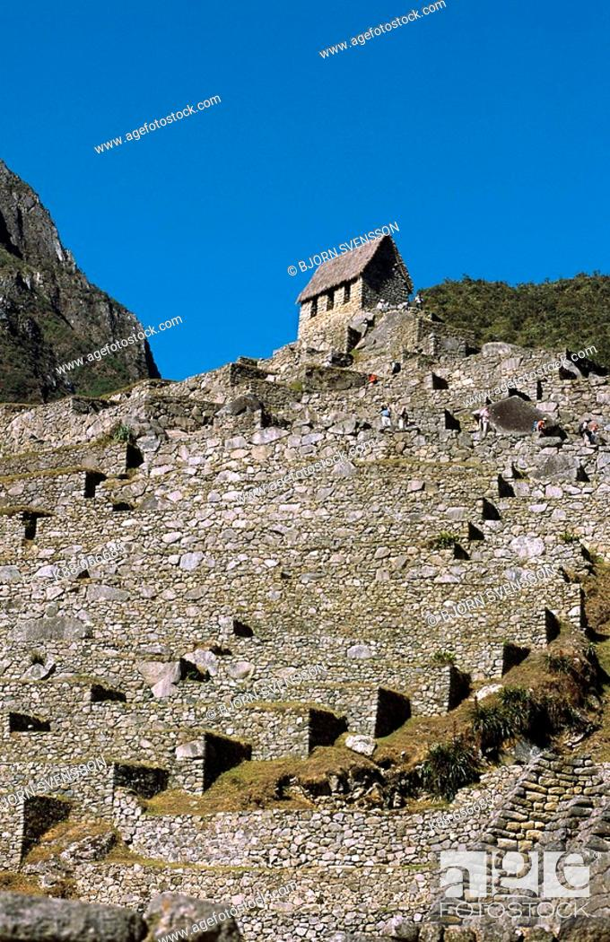 Stock Photo: Terraces at Machu Picchu. Cuzco, Peru.