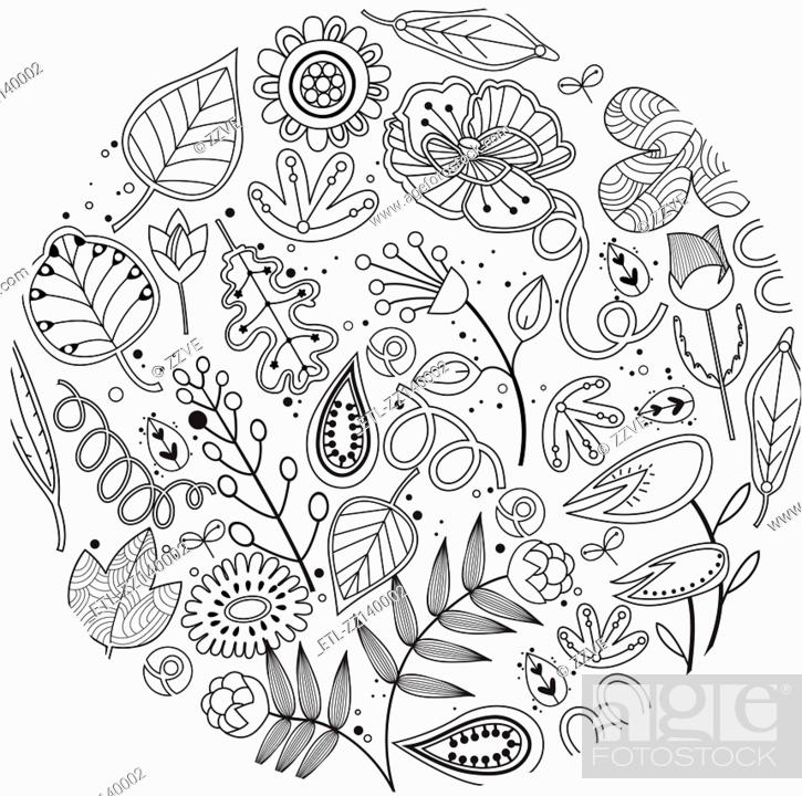 Stock Photo: various plants patterns.