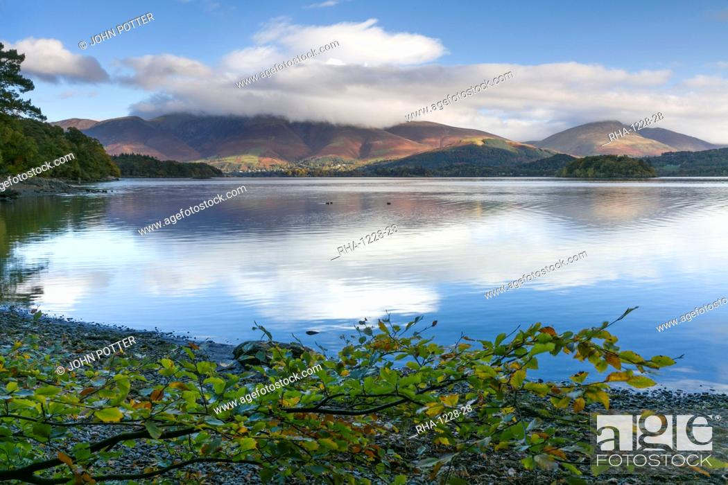 Stock Photo: Skiddaw and Blencathra fells from Borrowdale, Derwent Water, Lake District National Park, Cumbria, England, United Kingdom, Europe.