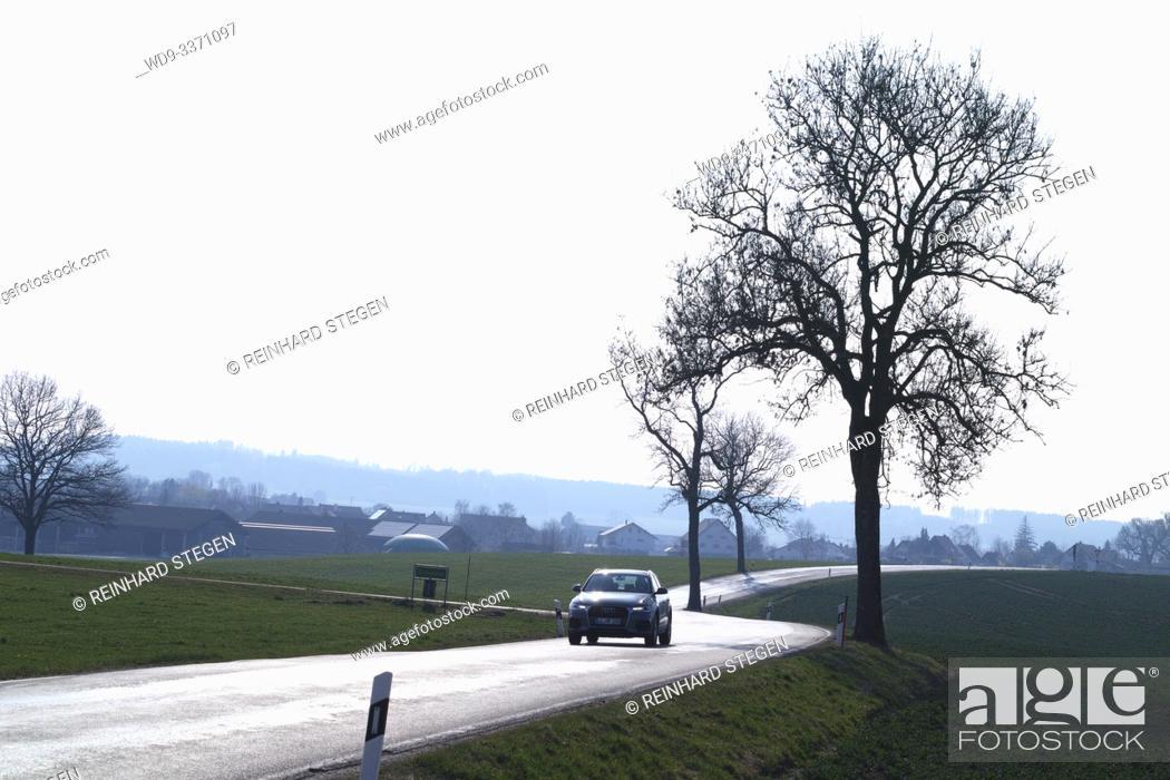 Imagen: shiny bright winding tar road, car approaching, near Landsberg/ Lech, Bavaria, Germany.