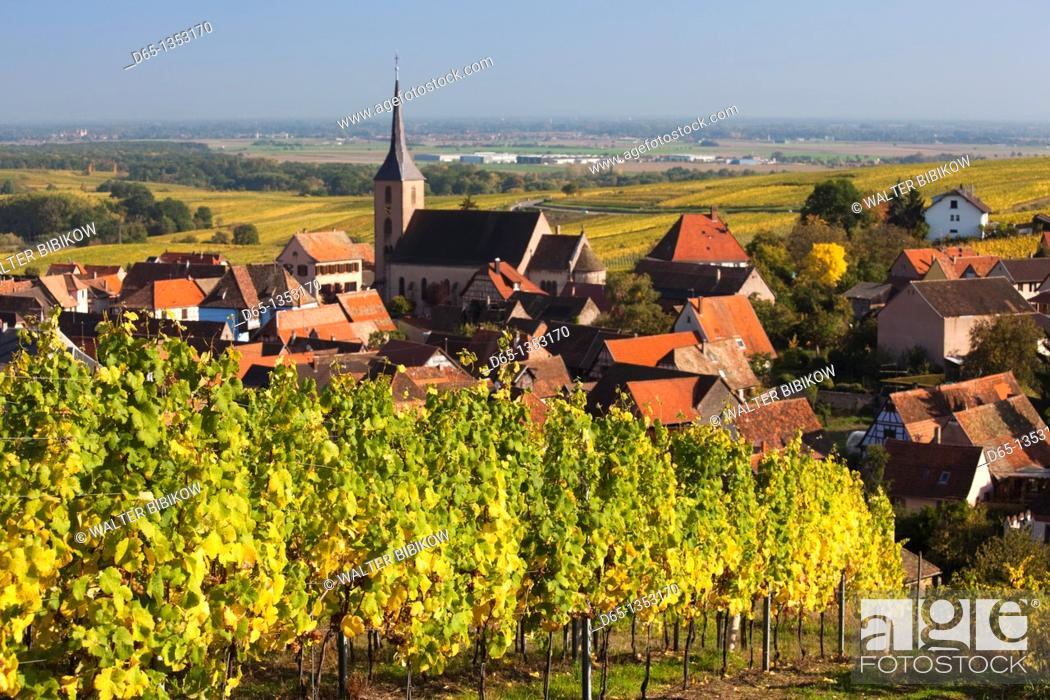 Stock Photo: France, Bas-Rhin, Alsace Region, Alasatian Wine Route, Blienschwiller, town overview from vineyards, autumn.
