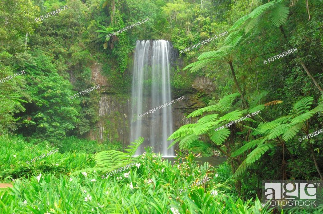 Stock Photo: Waterfall in the woods.