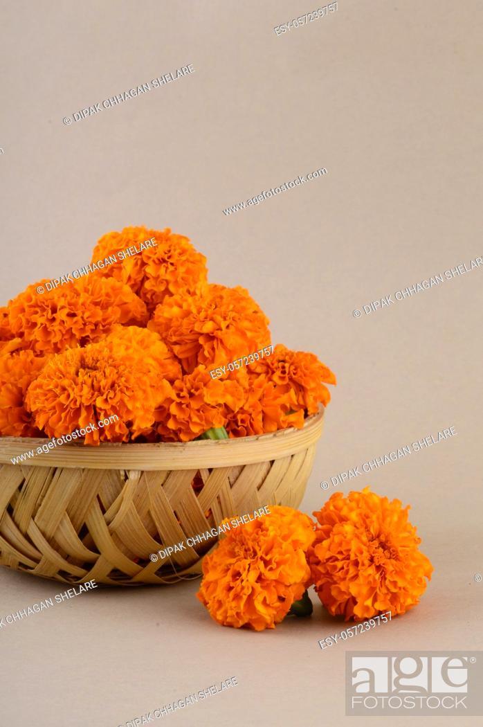 Stock Photo: Marigold (Zendu Flowers) flowers in a bamboo basket.