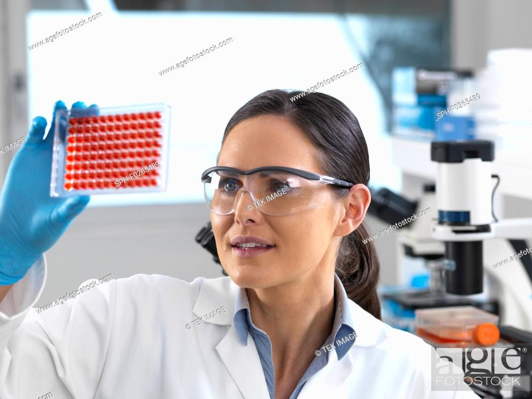 Stock Photo: Blood testing. Scientist examining blood samples in a multiwell plate.