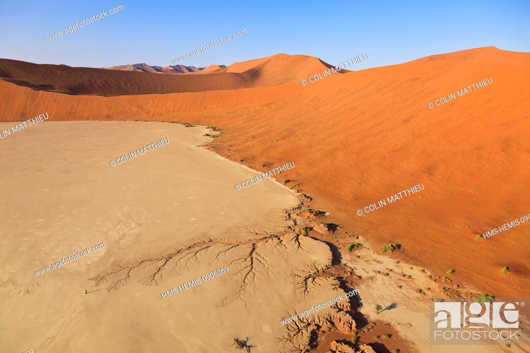 Stock Photo: Namibia, Hardap region, Namib desert, Namib-Naukluft national park, Namib Sand Sea listed as World Heritage by UNESCO, near Sossusvlei sand dunes, Deadvlei.