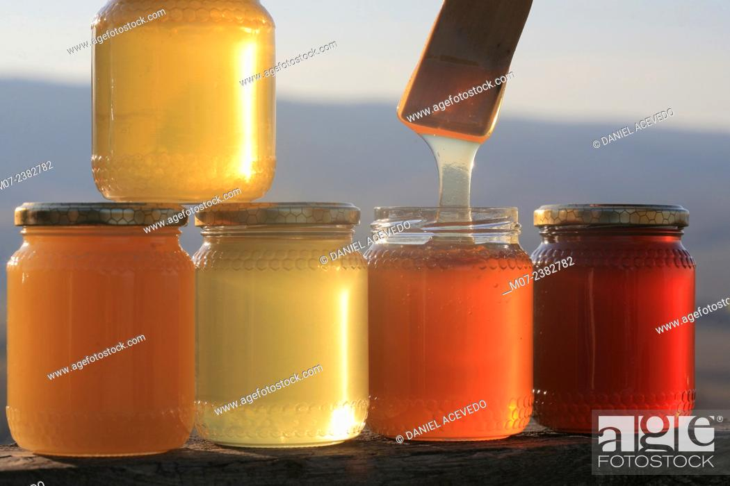 Stock Photo: Italian Honey, Tuscany, Europe.