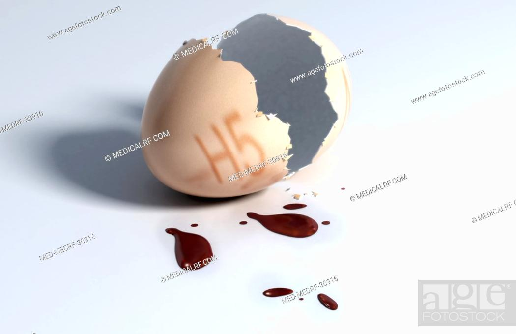 Stock Photo: Cracked egg.