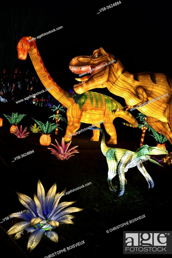 Imagen: France, Tarn, Gaillac, Festival des lanternes (Chinese Lantern Festival), Illuminated dinosaurs evoking the Zigong dinosaur fossil site in Sichuan. .