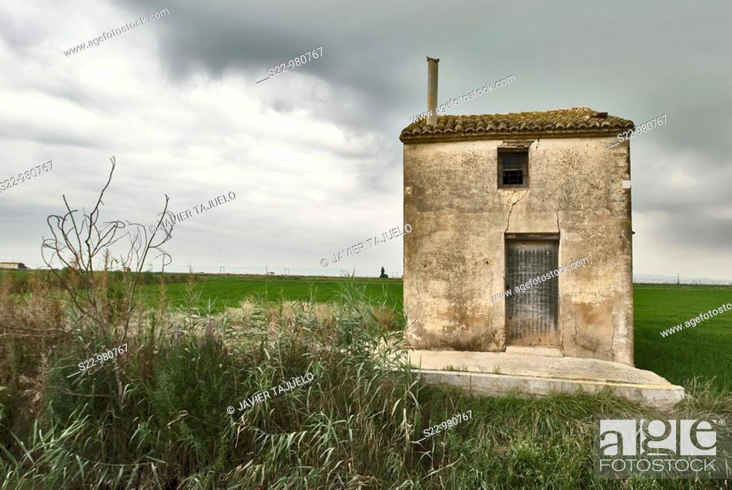 Stock Photo: Rice fields, La Albufera Natural Park, Valencia province, Comunidad Valenciana, Spain.
