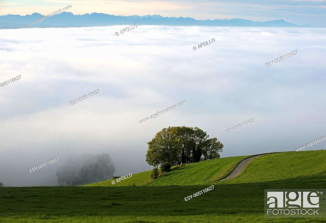 Stock Photo: Sea of fog hanging over the Swiss Central Plateau with the Swiss alps behind, Switzerland.