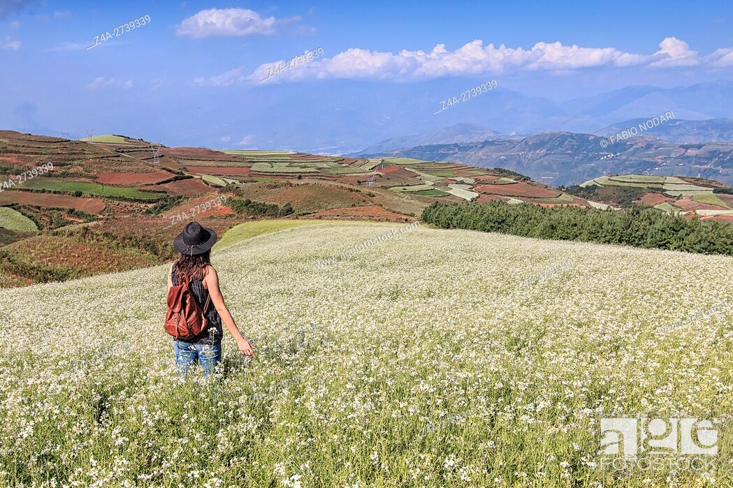 Stock Photo: An unrecognizable girl enjoying DongChuan red land panorama, one of the landmarks in Yunnan Province, China.