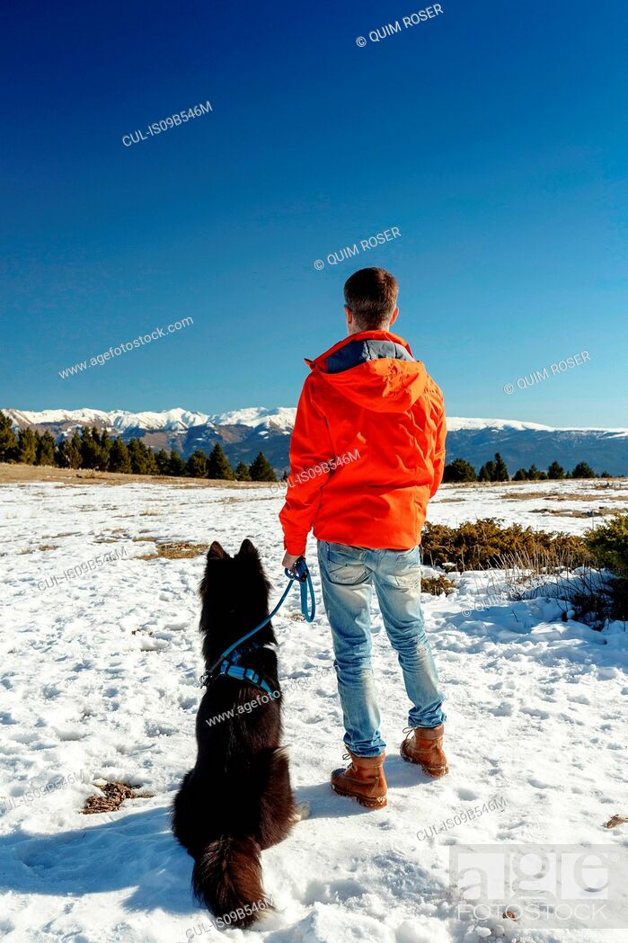 Stock Photo: Rear view of man with dog looking out at snow covered landscape.