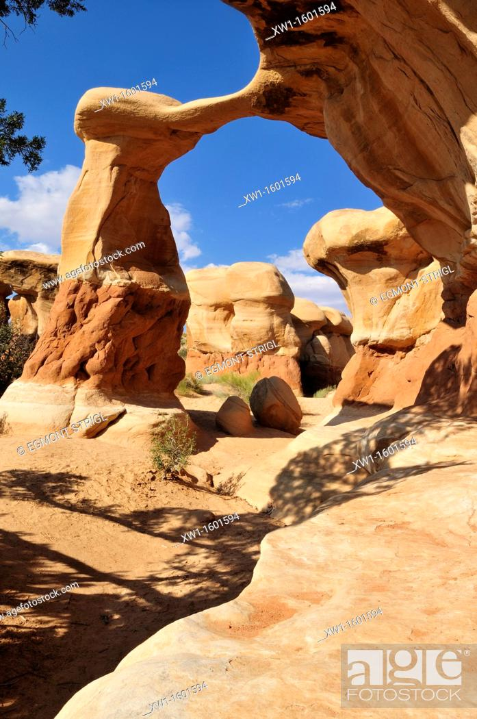 Imagen: Metate arch and hoodoos at Devils Garden, Grand Staircase Escalante National Monument, Utah, USA, North America.