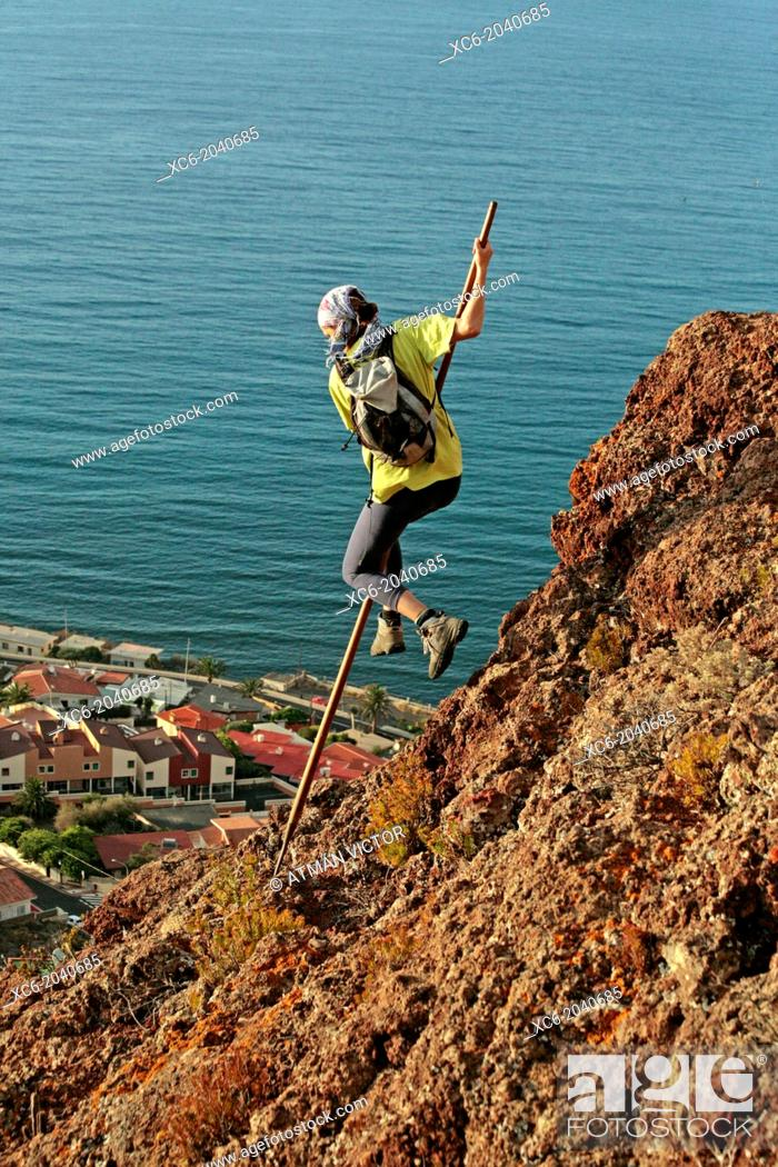 Stock Photo: Canarian shepherd jump.