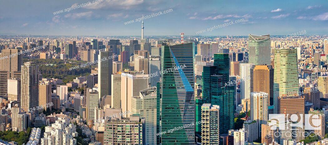 Imagen: Japan, Tokyo City, Shimbashi area panorama.