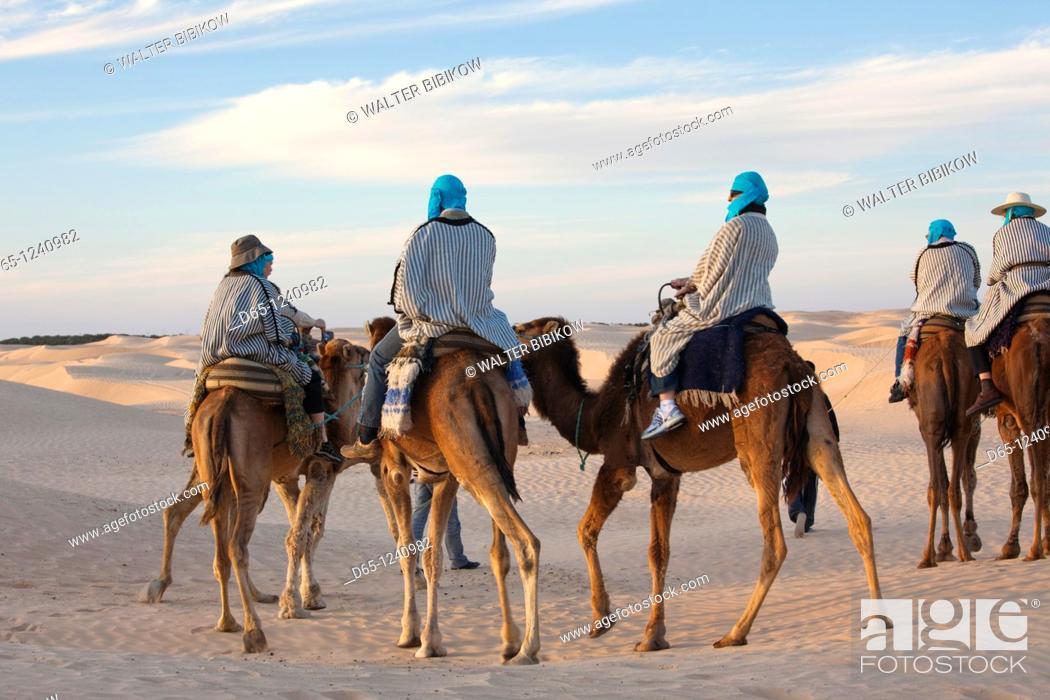 Stock Photo: Tunisia, Sahara Desert, Douz, Great Dune, camel caravan, NR.