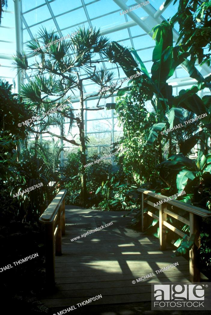 Brooklyn Botanical Garden Steinhardt Conservatory Tropical
