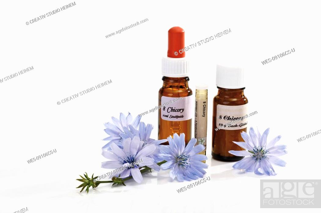 Stock Photo: Bottles with Bach Flower Stock Remedy, Chicory Cichorium intybus.
