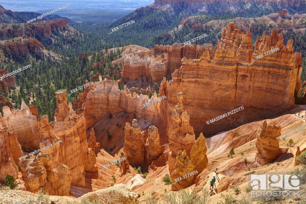 Stock Photo: Bryce Canyon, Utah, United States.