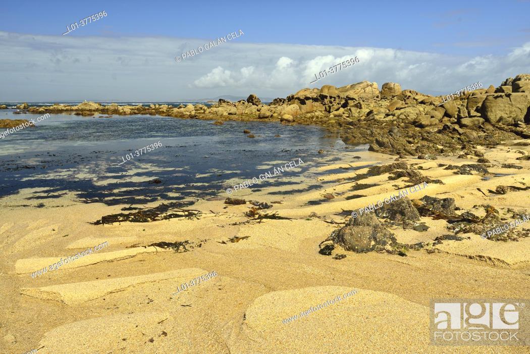Stock Photo: O Grove Peninsula, Arosa estuary, Pontevedra.