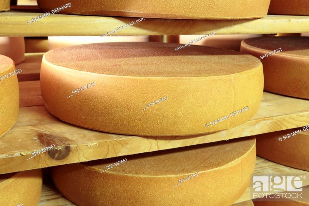 Stock Photo: Bergkäse cheese Alpine cheese on wooden shelves.