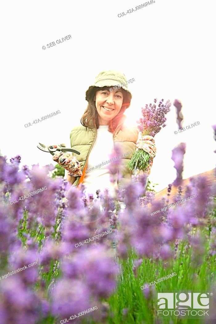 Stock Photo: Woman gathering flowers in garden.