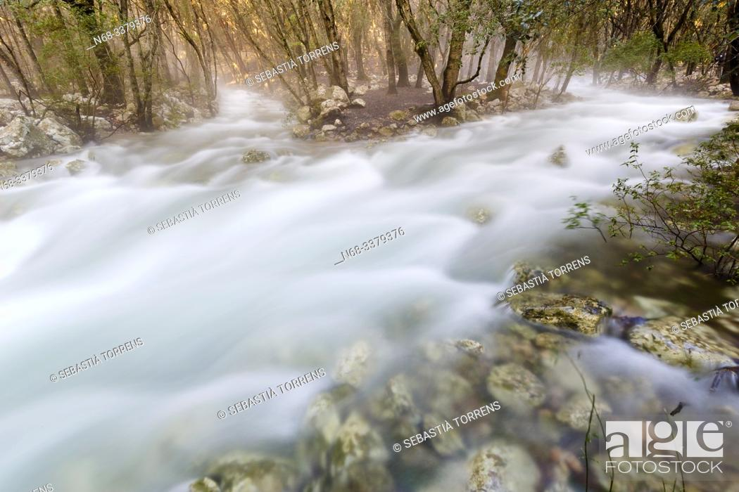 Stock Photo: Fonts Ufanes, water running inside the forest near Campanet, Majorca, Spain.