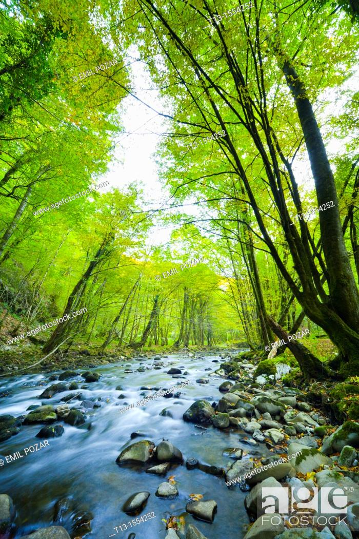Stock Photo: River Curak in Zeleni vir park near Skrad in Croatia, long exposure tripod shot.