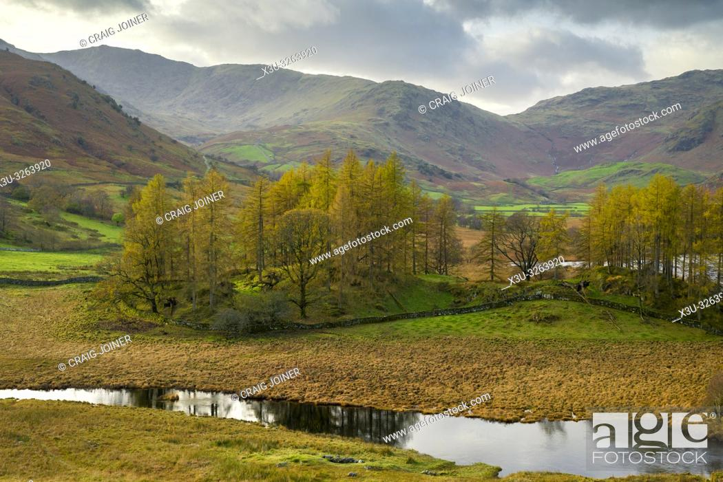 Stock Photo: Autumnal view of the River Brathay in the Lake District National Park, Cumbria, England.