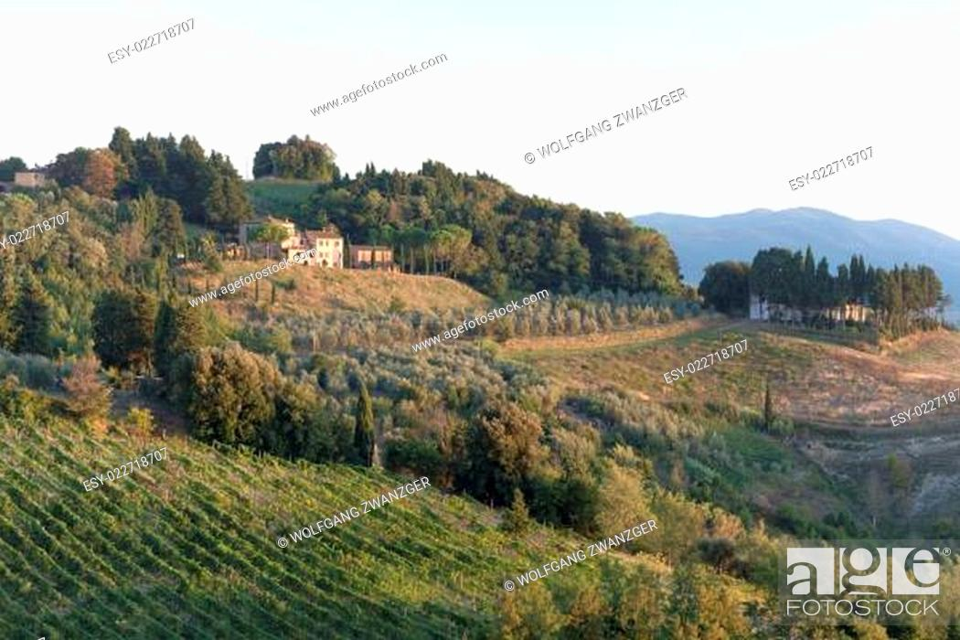 Stock Photo: Evening in Tuscany.