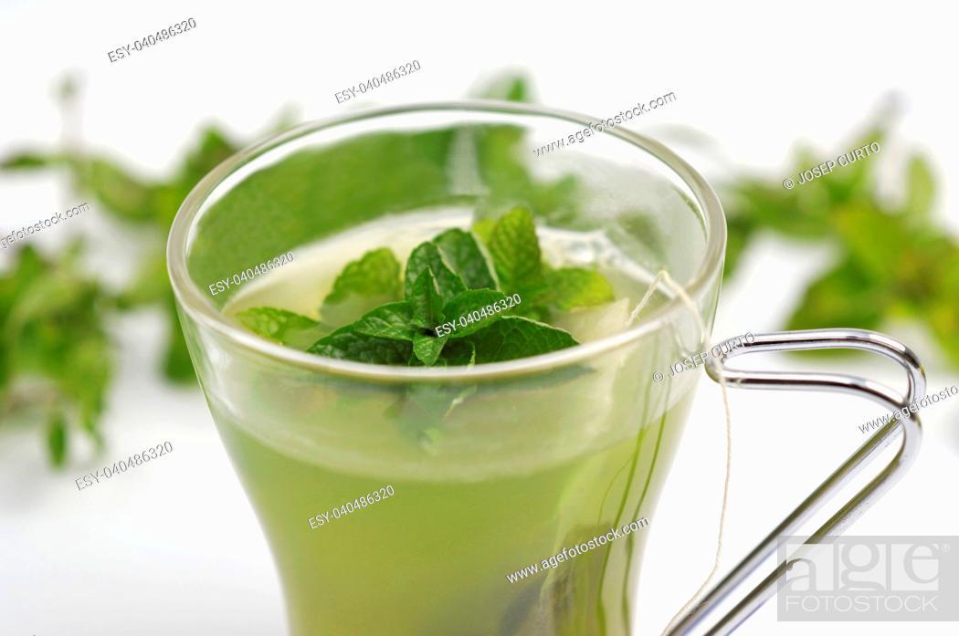 Stock Photo: tea mint on white.