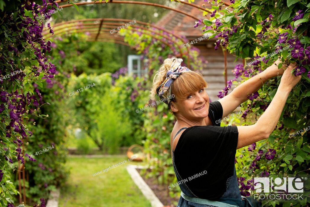 Stock Photo: Portrait happy woman pruning purple clematis flowers on garden trellis.