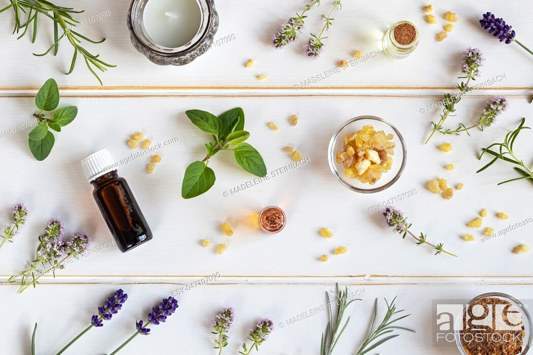 Stock Photo: Bottles of essential oil with frankincense, oregano, lavender and other fresh herbs on a white background.