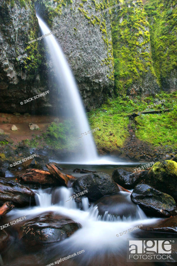 Stock Photo: Ponytail falls in the Columbia River Gorge, Oregon.