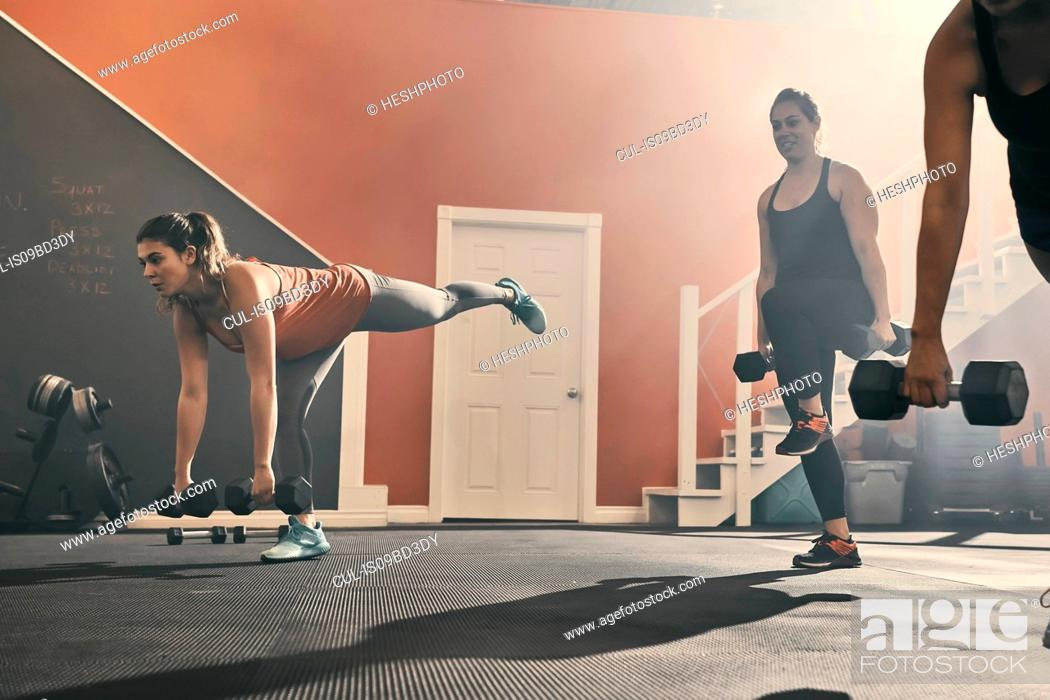 Stock Photo: Group of women in gym exercising using dumbbells.