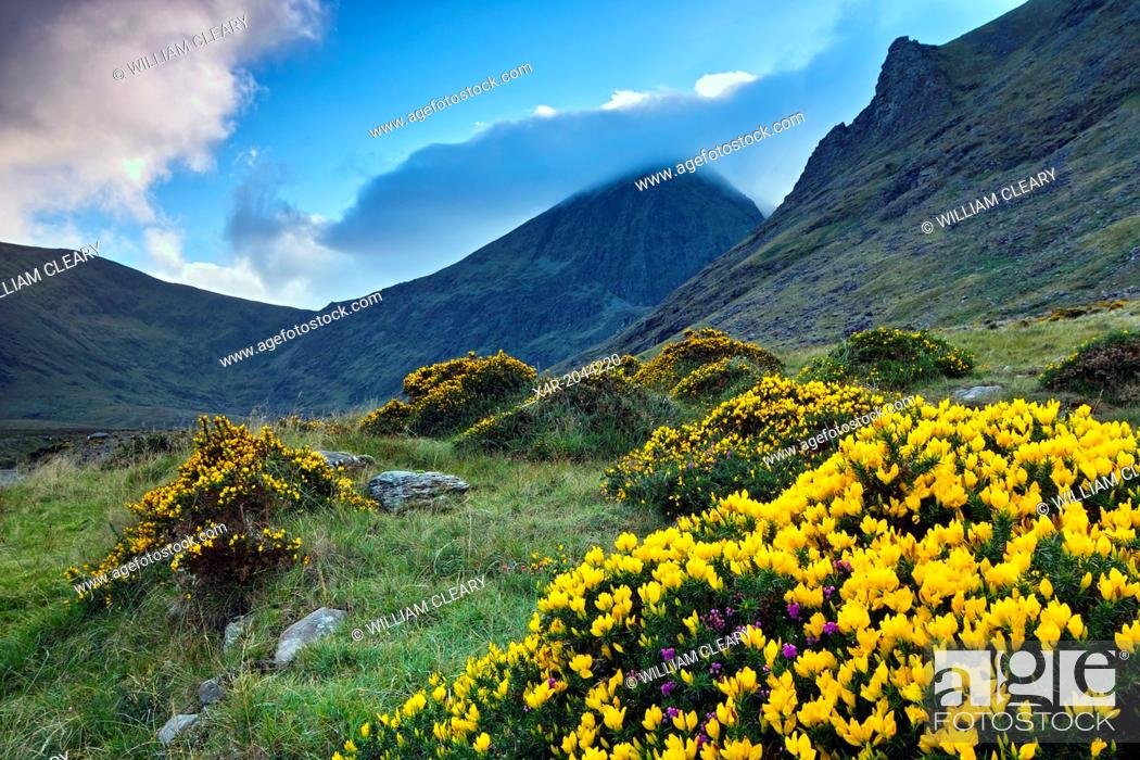 Stock Photo: Ireland's highest mountain, Corran Thuthail, capped by cloud, with the Hags tooth to the right, Magillycuddy Reeks, County Kerry, Ireland.