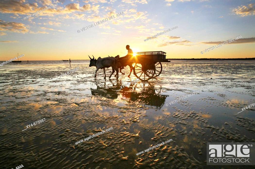 Stock Photo: At the beach of Tulear, Madagascar.