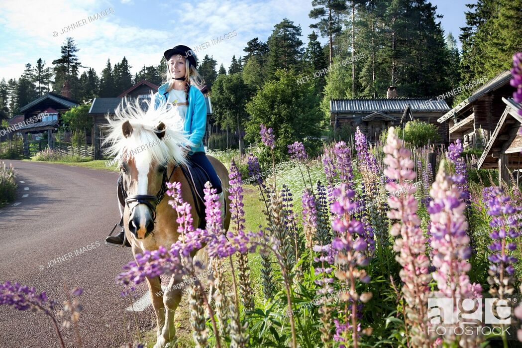 Stock Photo: Girl riding on horse on road.