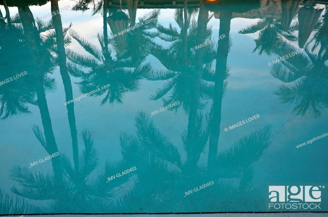 Imagen: Reflection of Palms, Miami, USA.