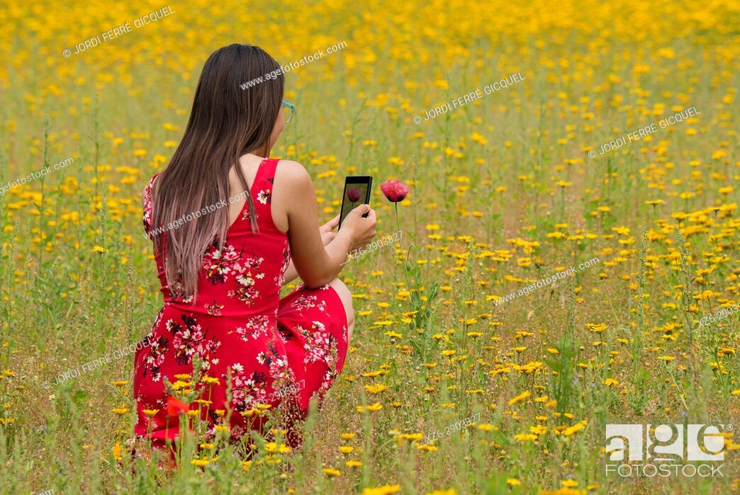Stock Photo: Girl with a red dress taking a photograph to a flower with a mobile in a yellow field.