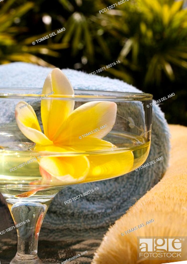 Stock Photo: Spa elements, yellow plumeria floating in glass, with loofah and towel.