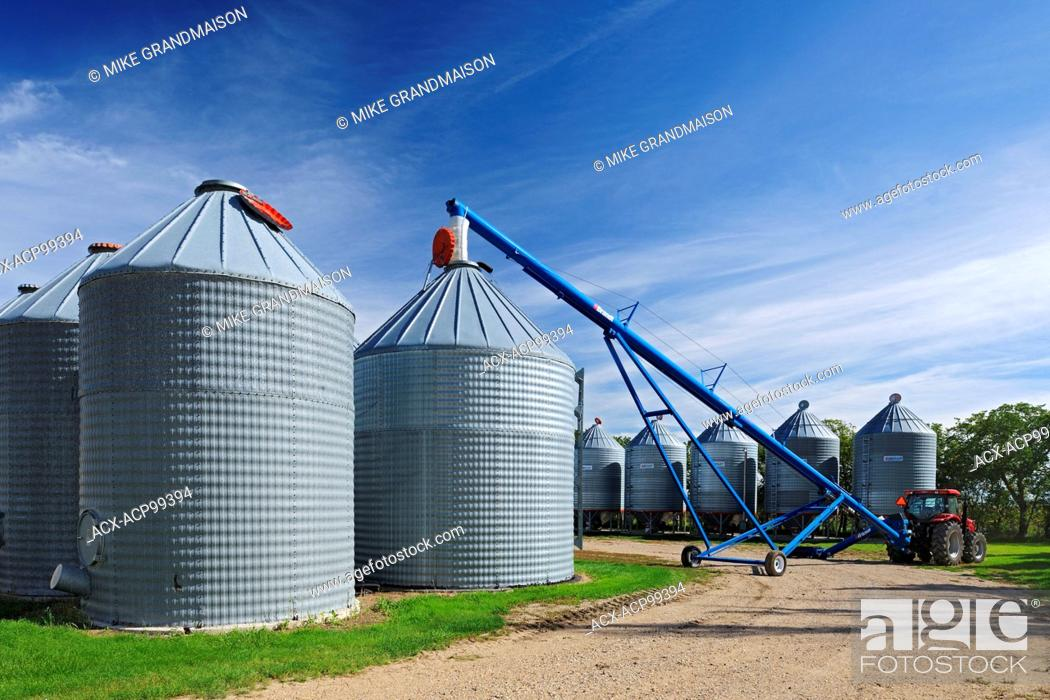 Grain bins and auger in farmyard - Property Released Yellow