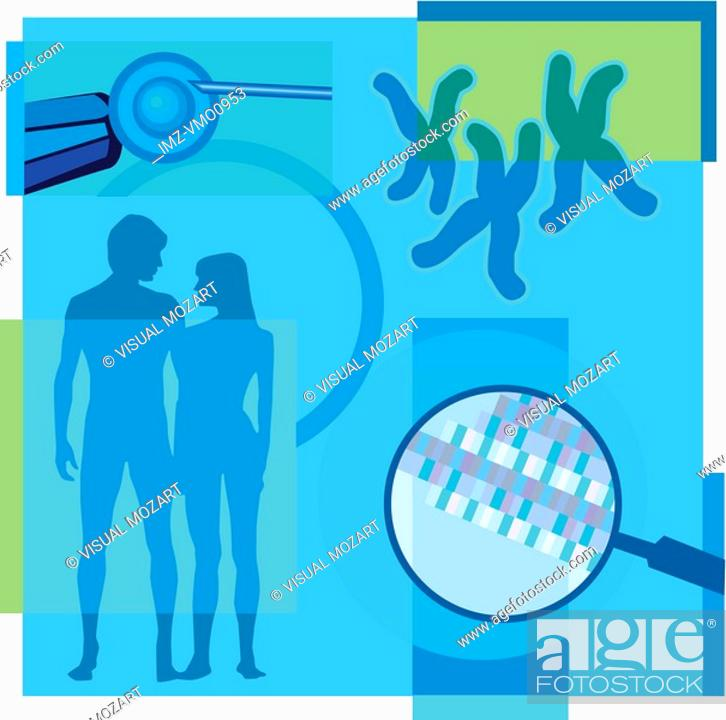 Stock Photo: Montage illustration about in-vitro fertilization containing an egg, a couple, DNA and chromosomes.