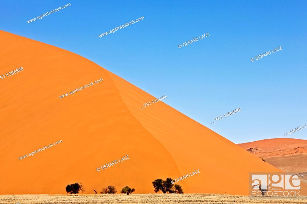 Namib Desert Namib Naukluft Park Sossusvlei Dunes Dune 45